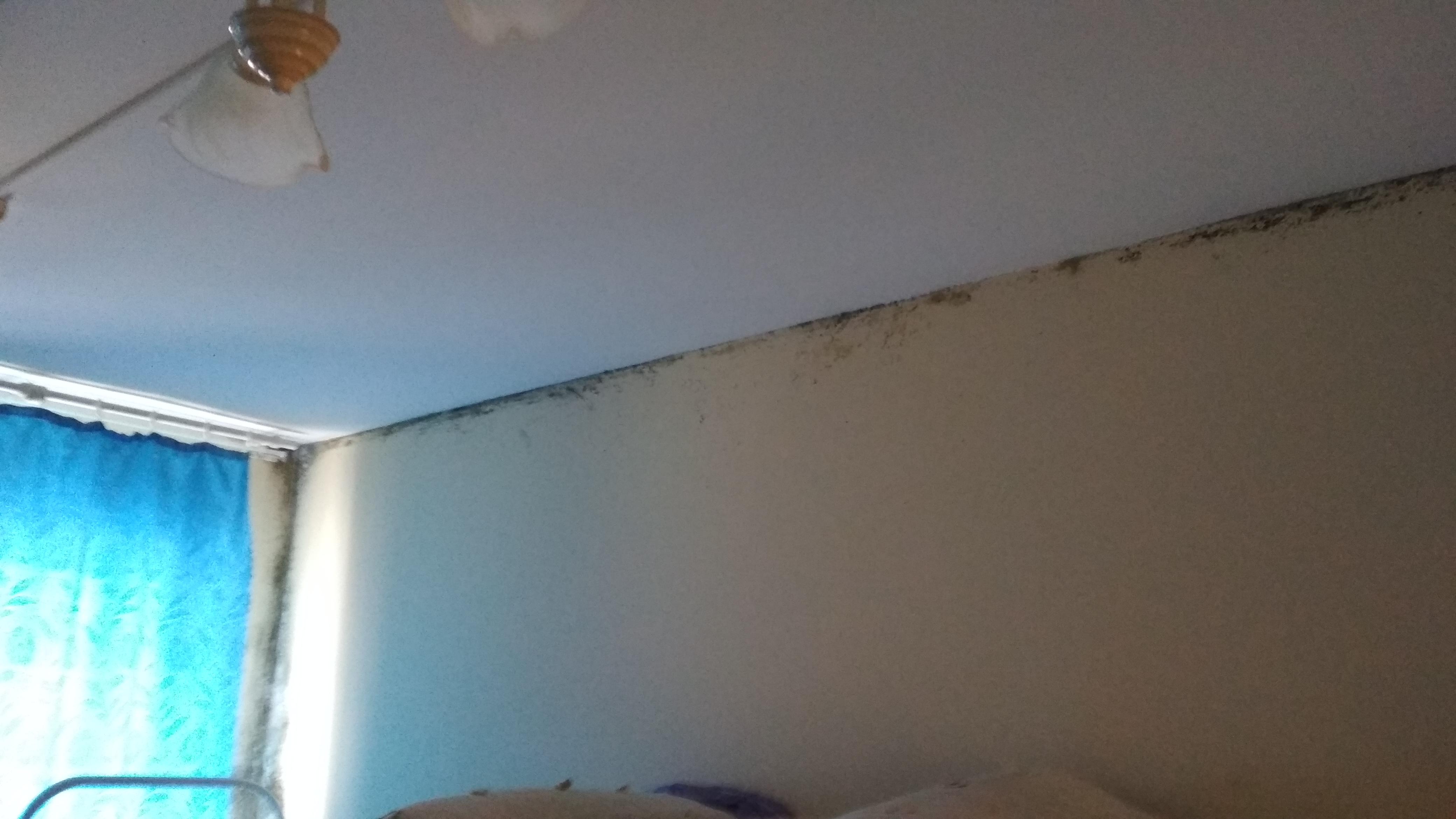 «ГосЖилФонд» отремонтирует дом на Гатчинском шоссе
